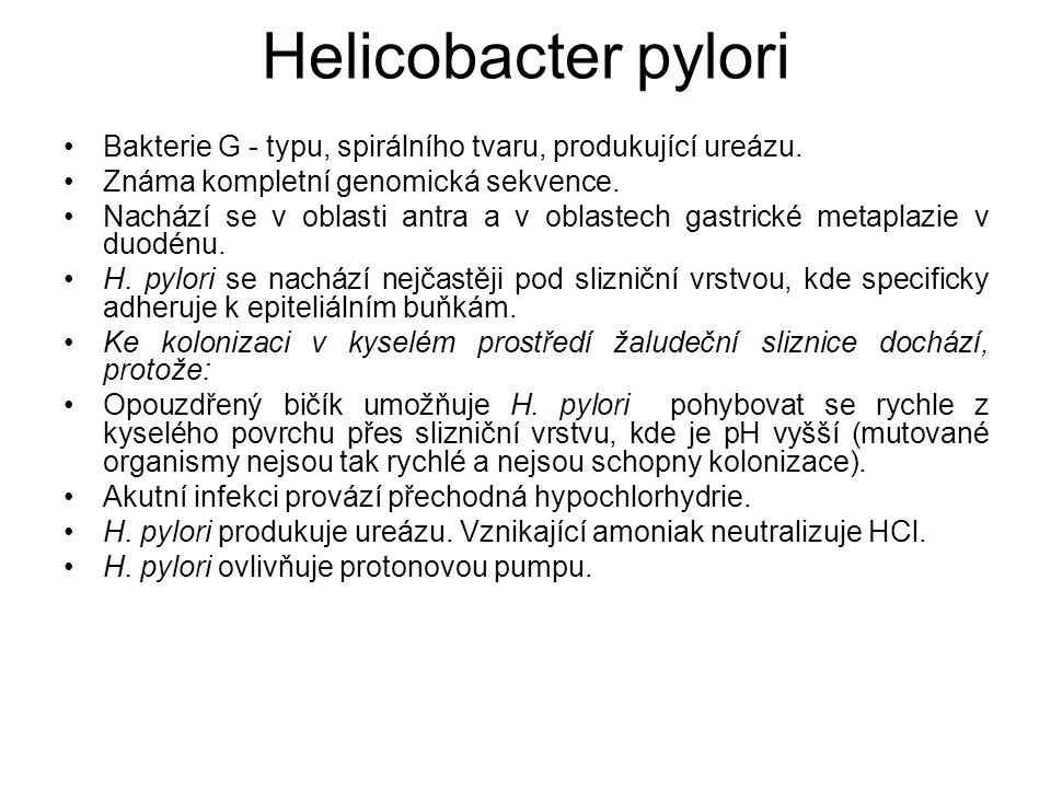 Helicobacter pylori Bakterie G - typu, spirálního tvaru, produkující ureázu. Známa kompletní genomická sekvence.