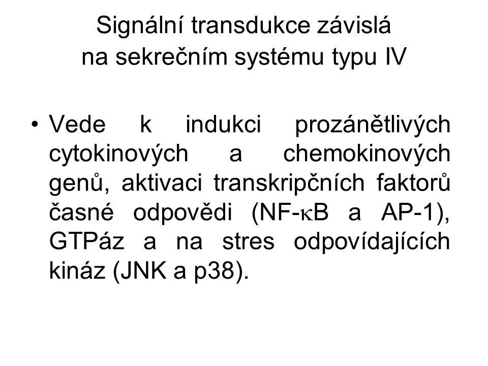 Signální transdukce závislá na sekrečním systému typu IV