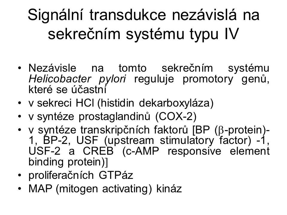 Signální transdukce nezávislá na sekrečním systému typu IV