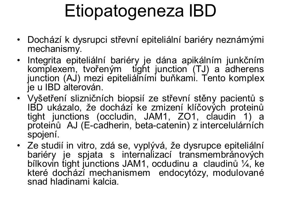 Etiopatogeneza IBD Dochází k dysrupci střevní epiteliální bariéry neznámými mechanismy.