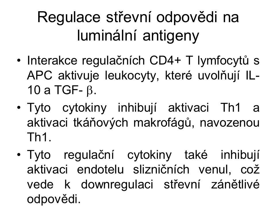 Regulace střevní odpovědi na luminální antigeny