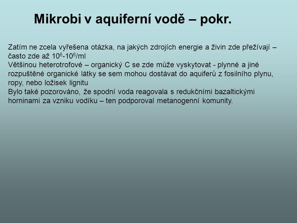 Mikrobi v aquiferní vodě – pokr.