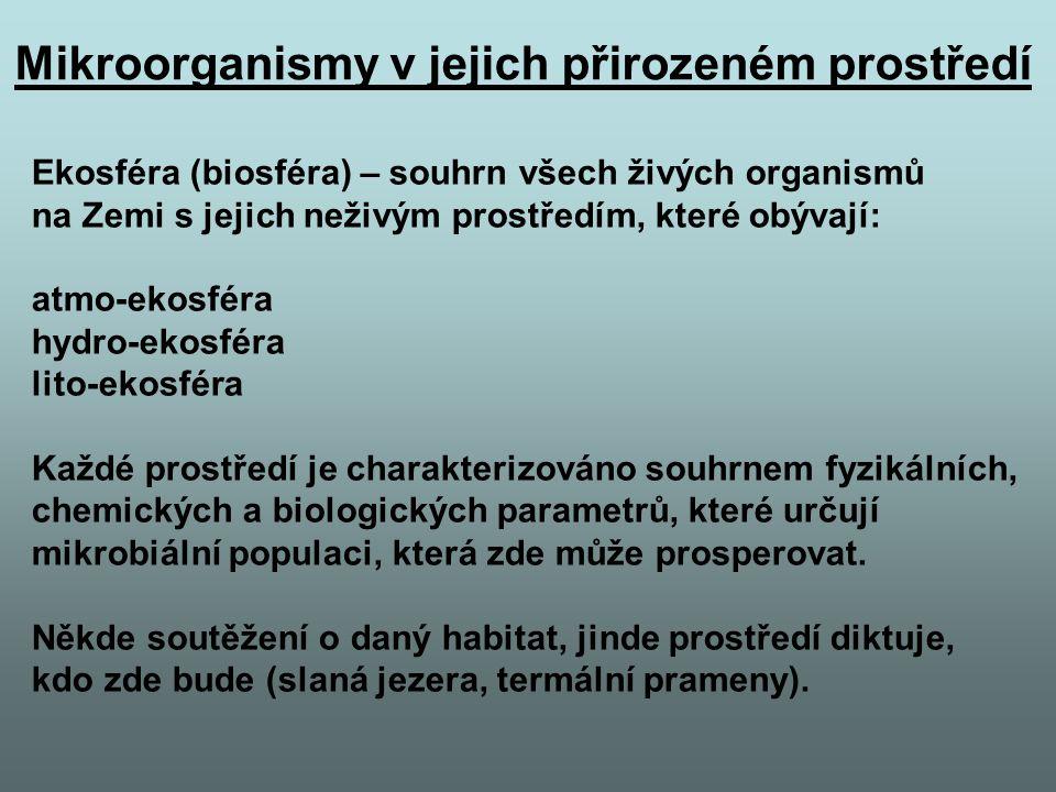 Mikroorganismy v jejich přirozeném prostředí