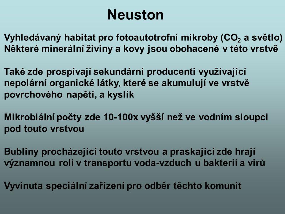 Neuston Vyhledávaný habitat pro fotoautotrofní mikroby (CO2 a světlo)