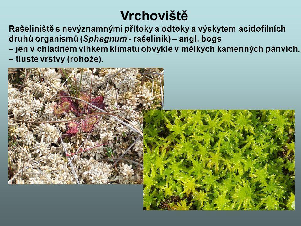 Vrchoviště Rašeliniště s nevýznamnými přítoky a odtoky a výskytem acidofilních. druhů organismů (Sphagnum - rašeliník) – angl. bogs.