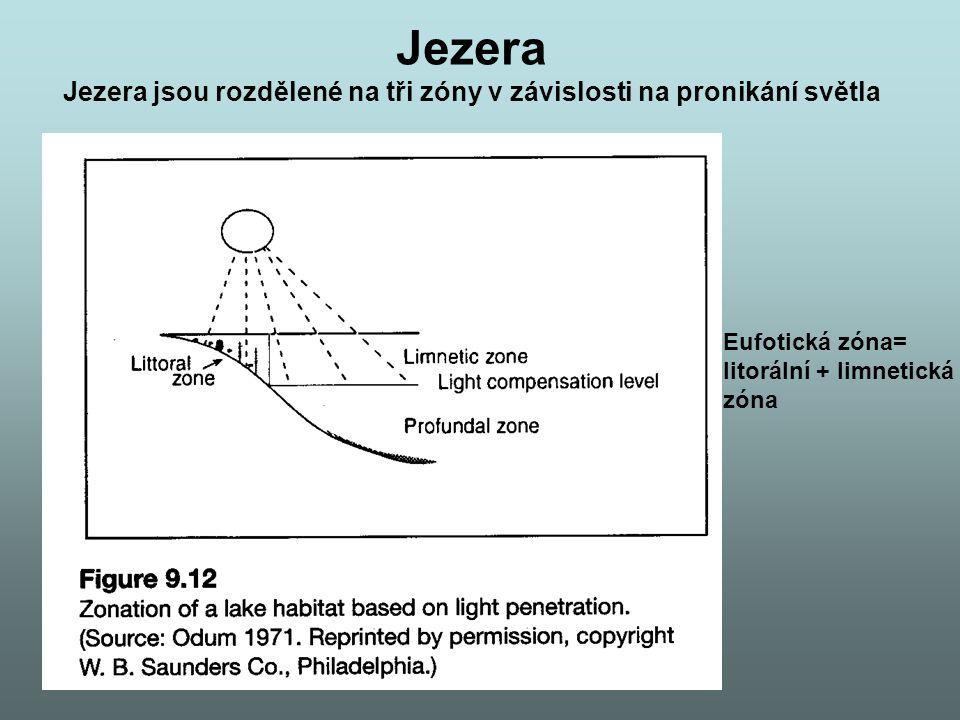 Jezera Jezera jsou rozdělené na tři zóny v závislosti na pronikání světla. Eufotická zóna= litorální + limnetická.