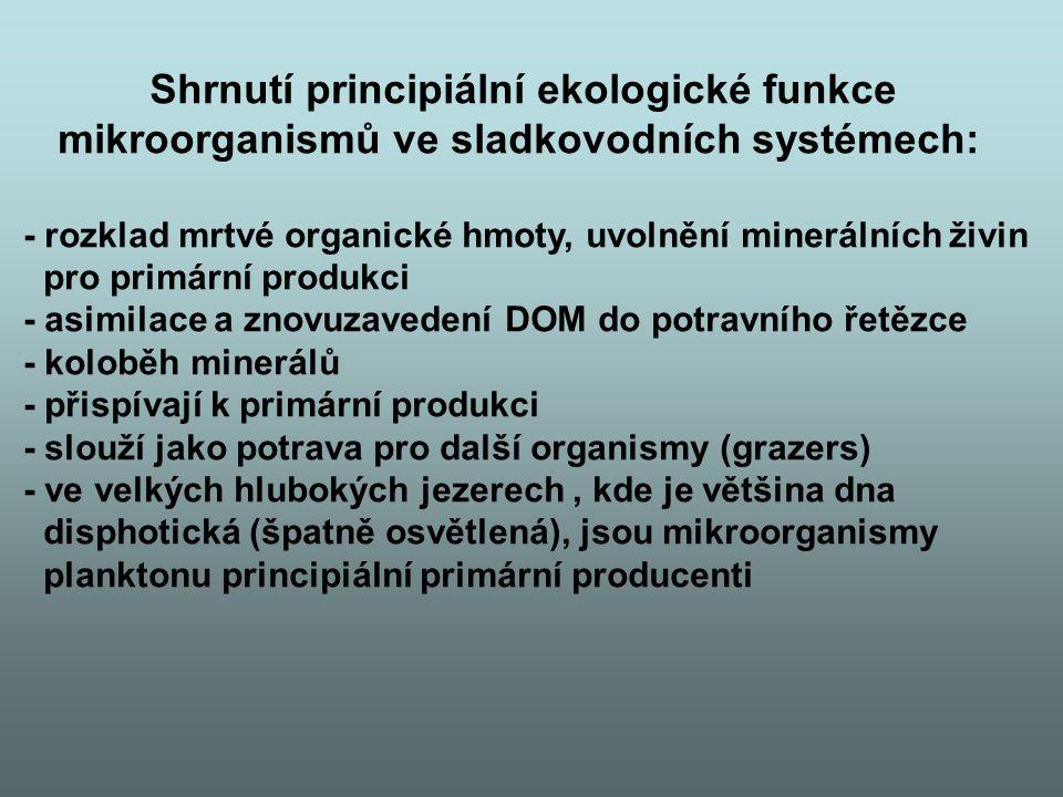 Shrnutí principiální ekologické funkce
