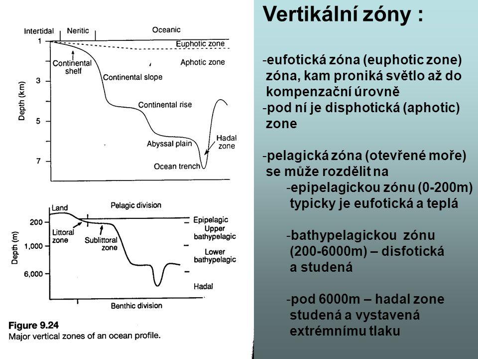 Vertikální zóny : eufotická zóna (euphotic zone)