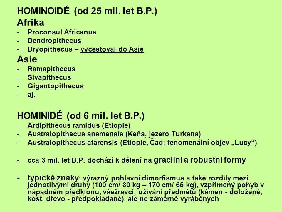 HOMINOIDÉ (od 25 mil. let B.P.) Afrika