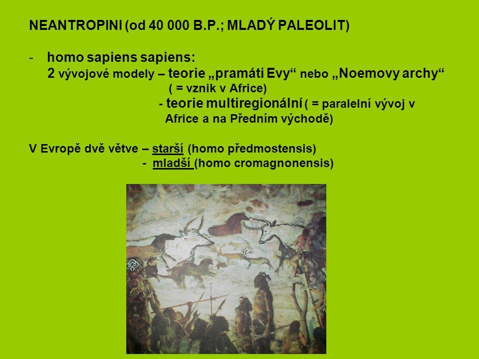 NEANTROPINI (od 40 000 B.P.; MLADÝ PALEOLIT) homo sapiens sapiens: