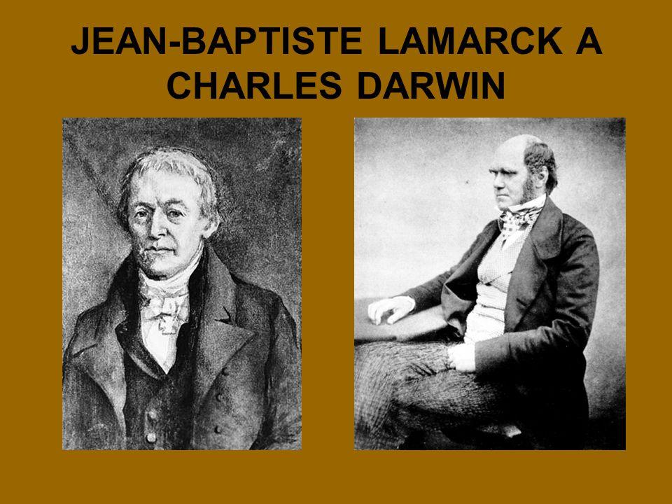 JEAN-BAPTISTE LAMARCK A CHARLES DARWIN