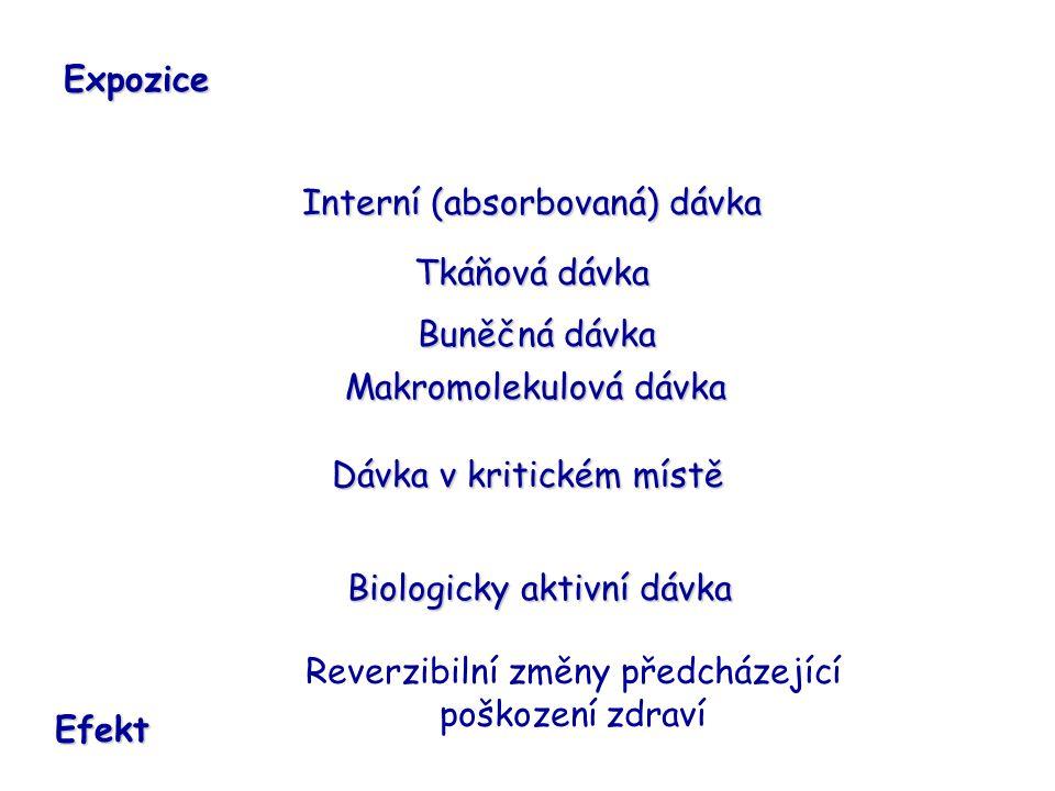 Interní (absorbovaná) dávka