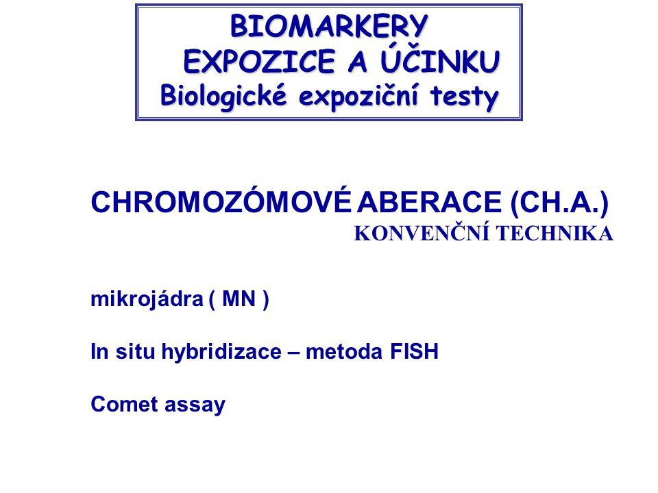 EXPOZICE A ÚČINKU Biologické expoziční testy