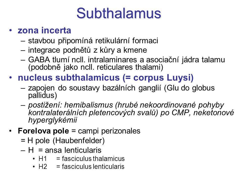 Subthalamus zona incerta nucleus subthalamicus (= corpus Luysi)