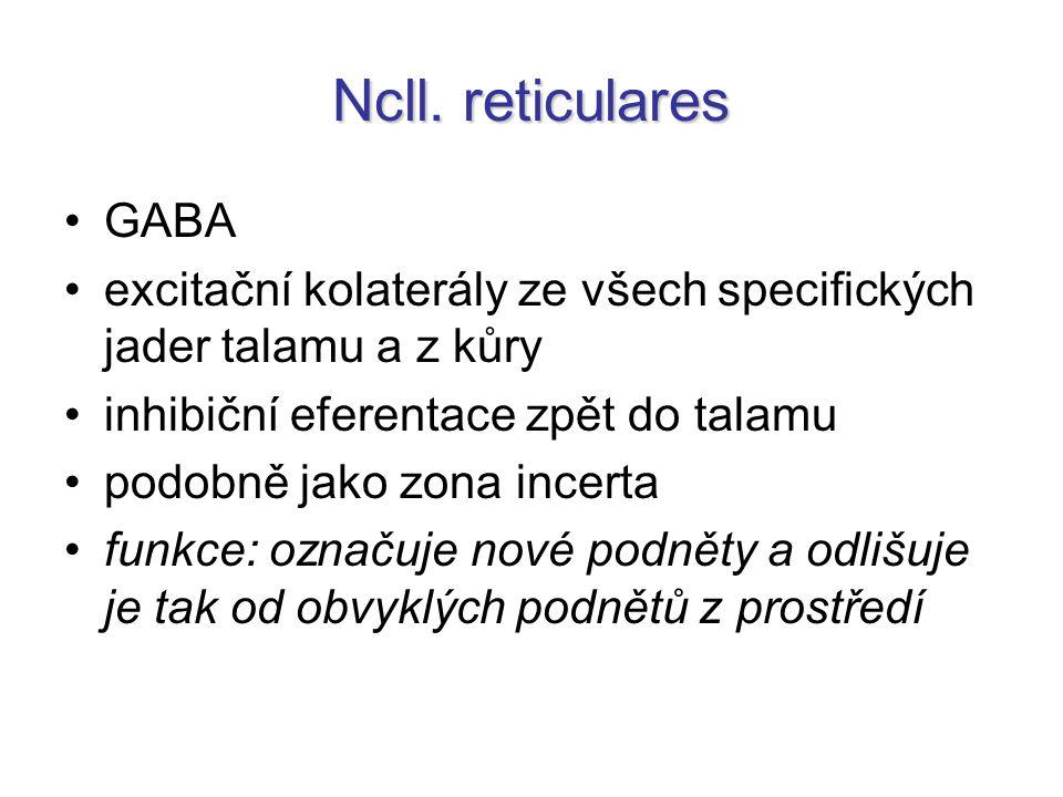 Ncll. reticulares GABA. excitační kolaterály ze všech specifických jader talamu a z kůry. inhibiční eferentace zpět do talamu.