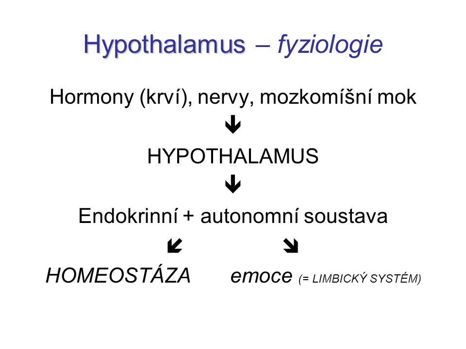 Hypothalamus – fyziologie