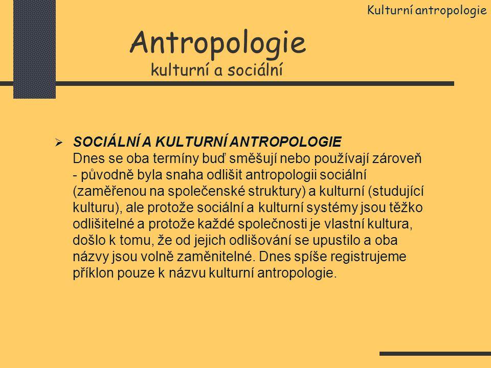Antropologie kulturní a sociální