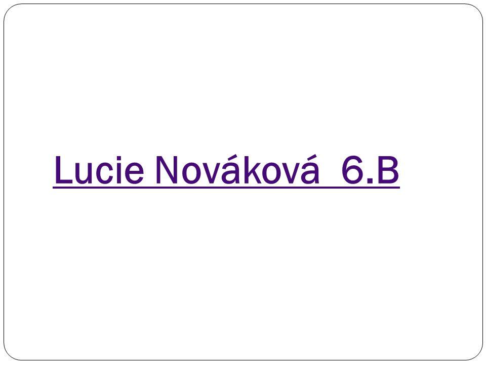 Lucie Nováková 6.B