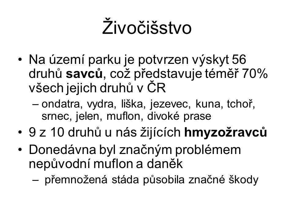 Živočišstvo Na území parku je potvrzen výskyt 56 druhů savců, což představuje téměř 70% všech jejich druhů v ČR.