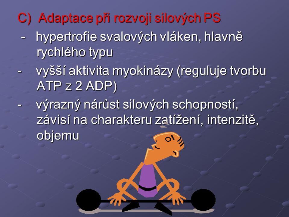 C) Adaptace při rozvoji silových PS