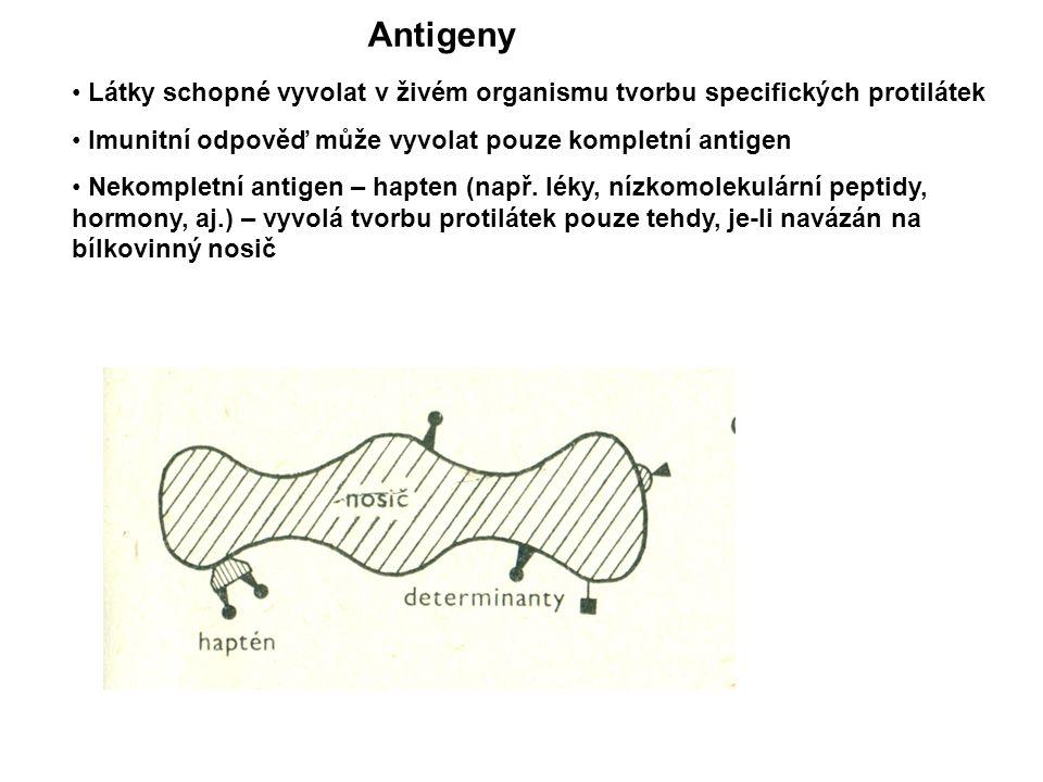 Antigeny Látky schopné vyvolat v živém organismu tvorbu specifických protilátek. Imunitní odpověď může vyvolat pouze kompletní antigen.