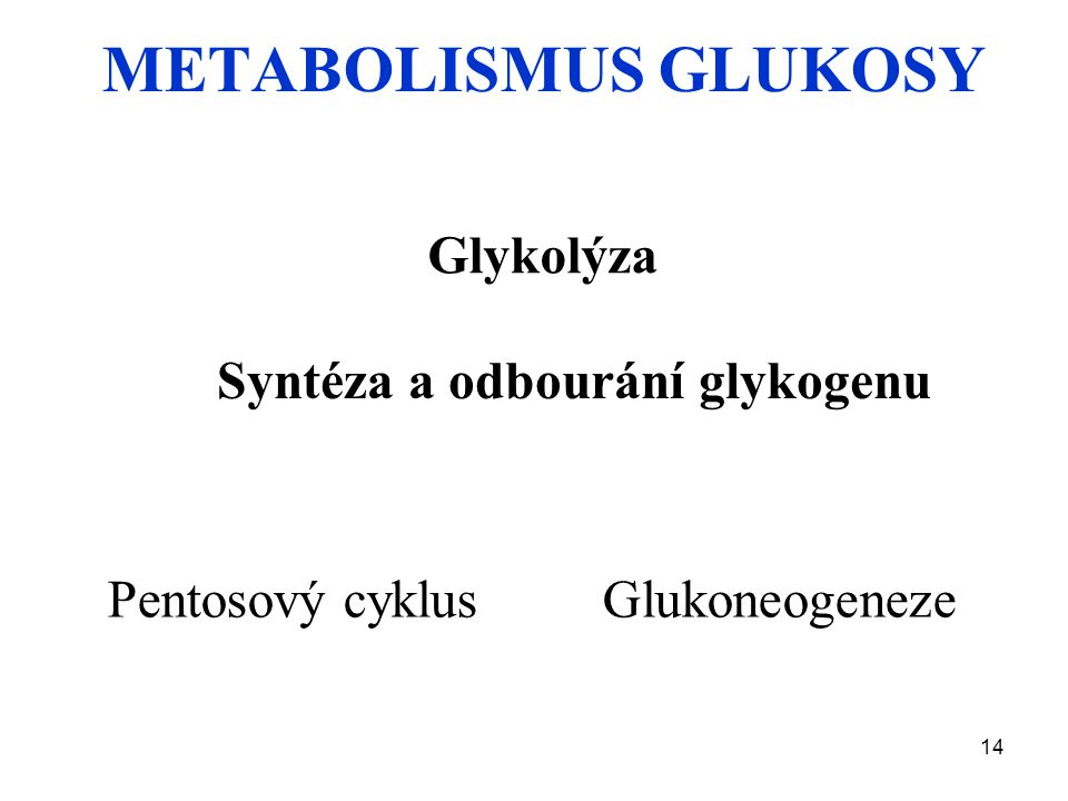 METABOLISMUS GLUKOSY Glykolýza Syntéza a odbourání glykogenu