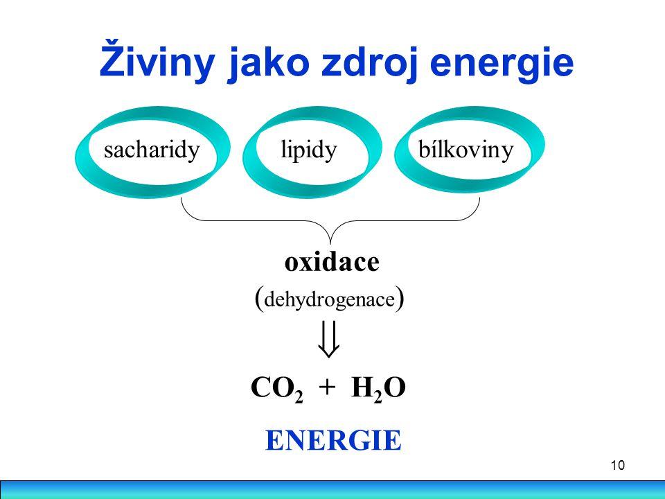 Živiny jako zdroj energie