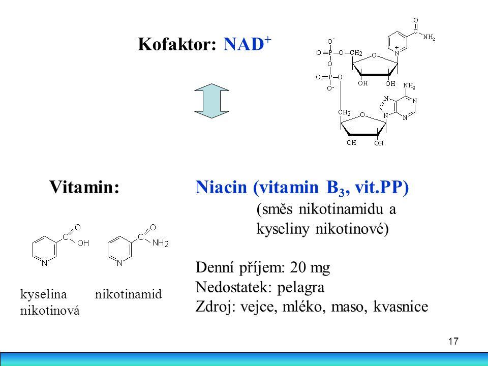 Vitamin: Niacin (vitamin B3, vit.PP)