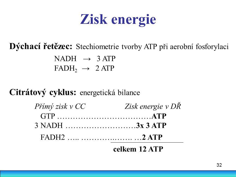 Zisk energie Dýchací řetězec: Stechiometrie tvorby ATP při aerobní fosforylaci. NADH → 3 ATP. FADH2 → 2 ATP.