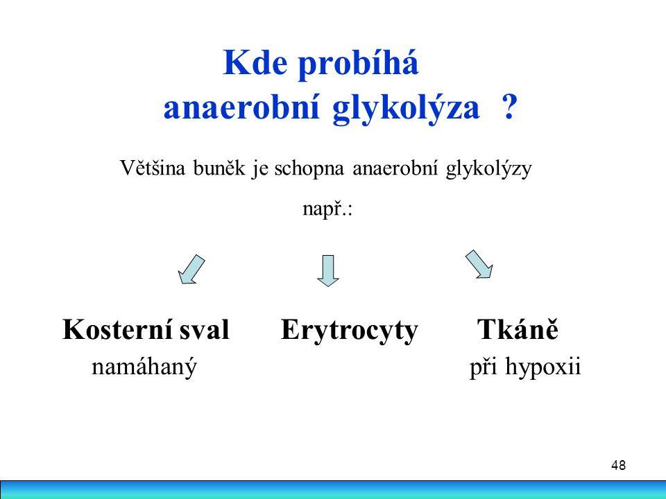 Kde probíhá anaerobní glykolýza Kosterní sval Erytrocyty Tkáně