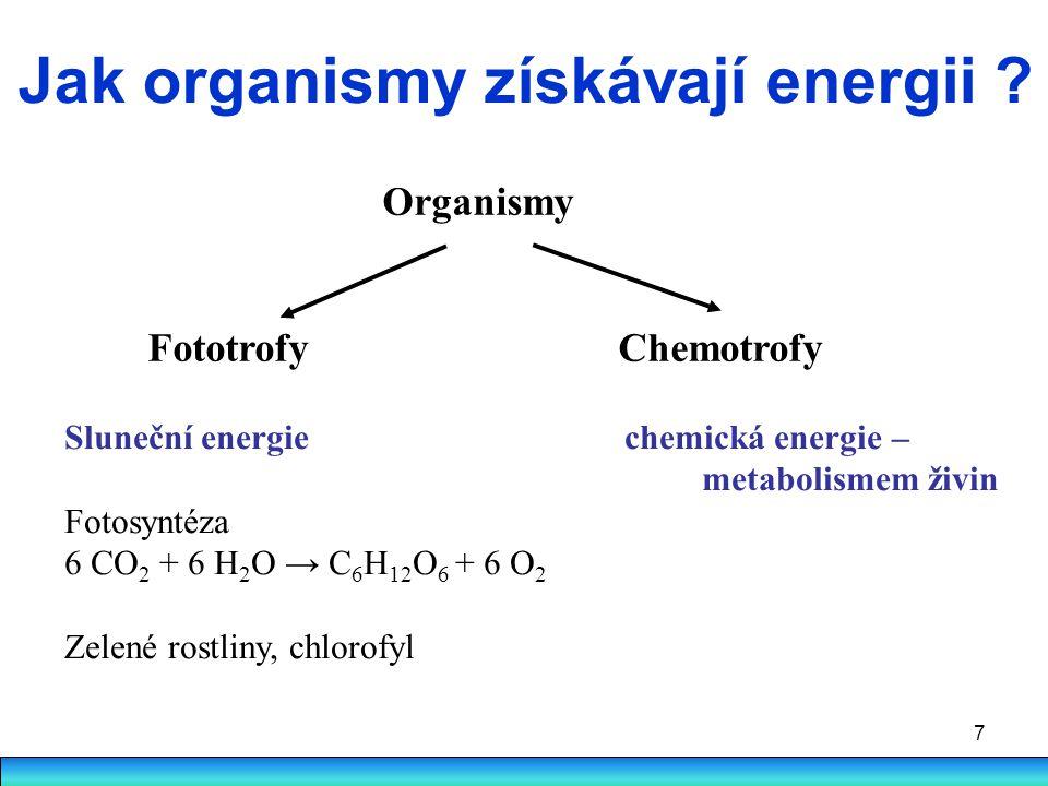 Jak organismy získávají energii