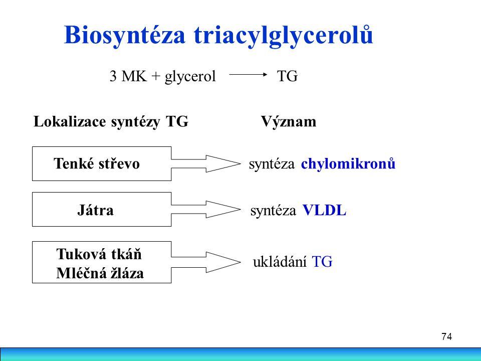 Biosyntéza triacylglycerolů