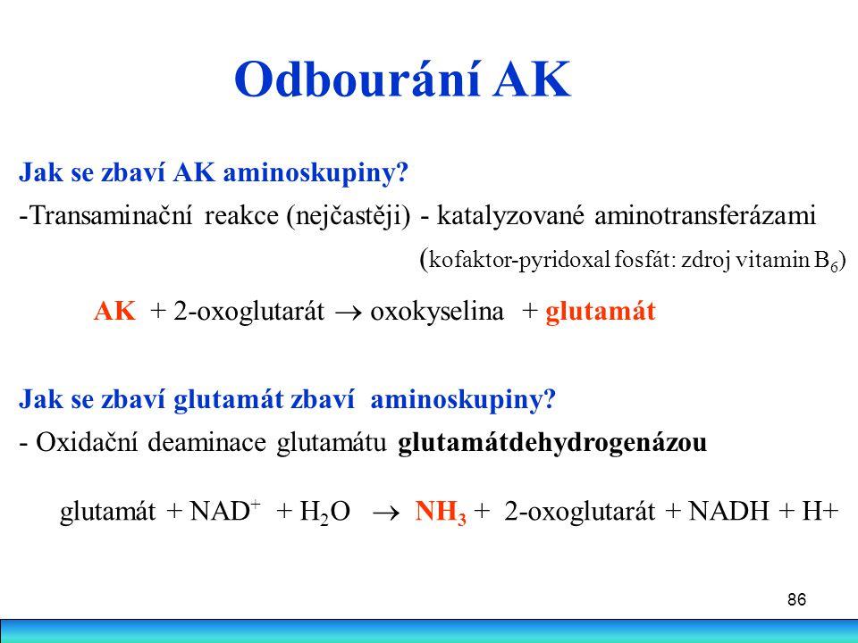 Odbourání AK Jak se zbaví AK aminoskupiny