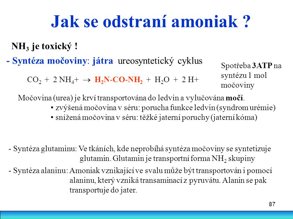 Jak se odstraní amoniak