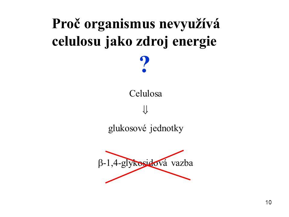 Proč organismus nevyužívá celulosu jako zdroj energie