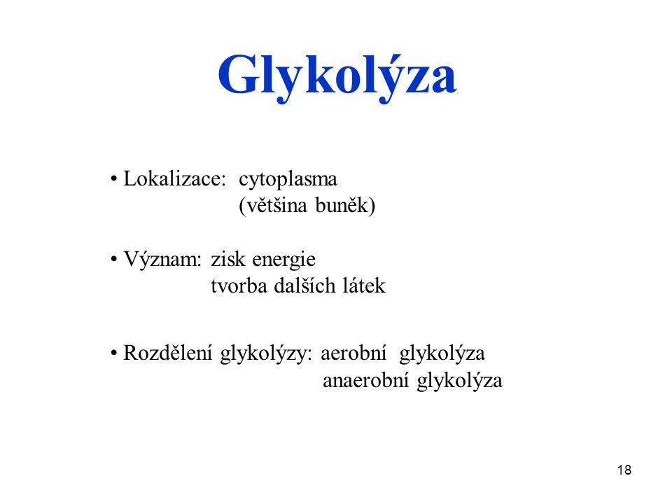 Glykolýza • Lokalizace: cytoplasma (většina buněk)