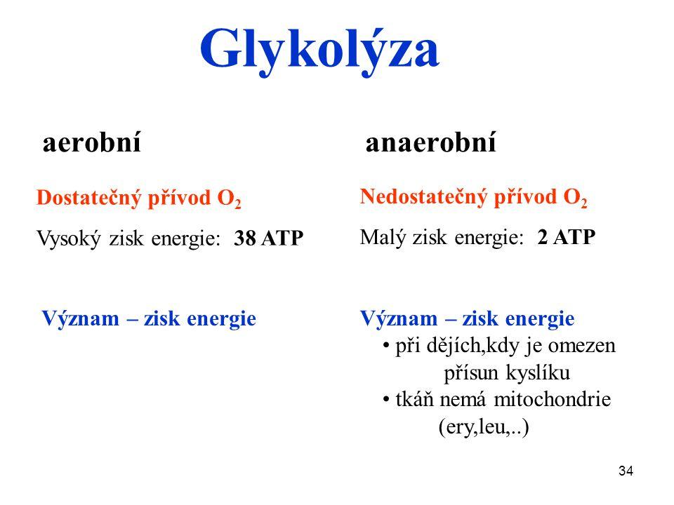Glykolýza aerobní anaerobní Dostatečný přívod O2