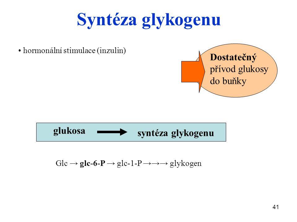 Syntéza glykogenu Dostatečný přívod glukosy do buňky glukosa