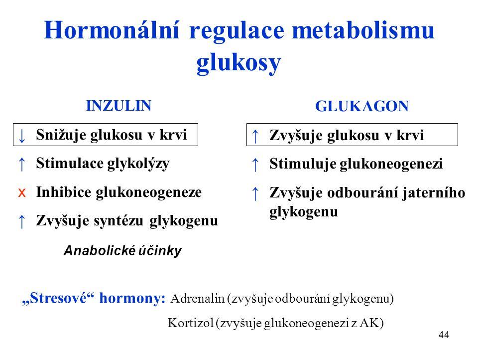 Hormonální regulace metabolismu glukosy