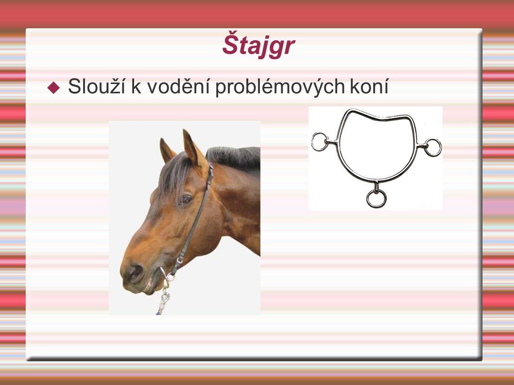 Štajgr Slouží k vodění problémových koní