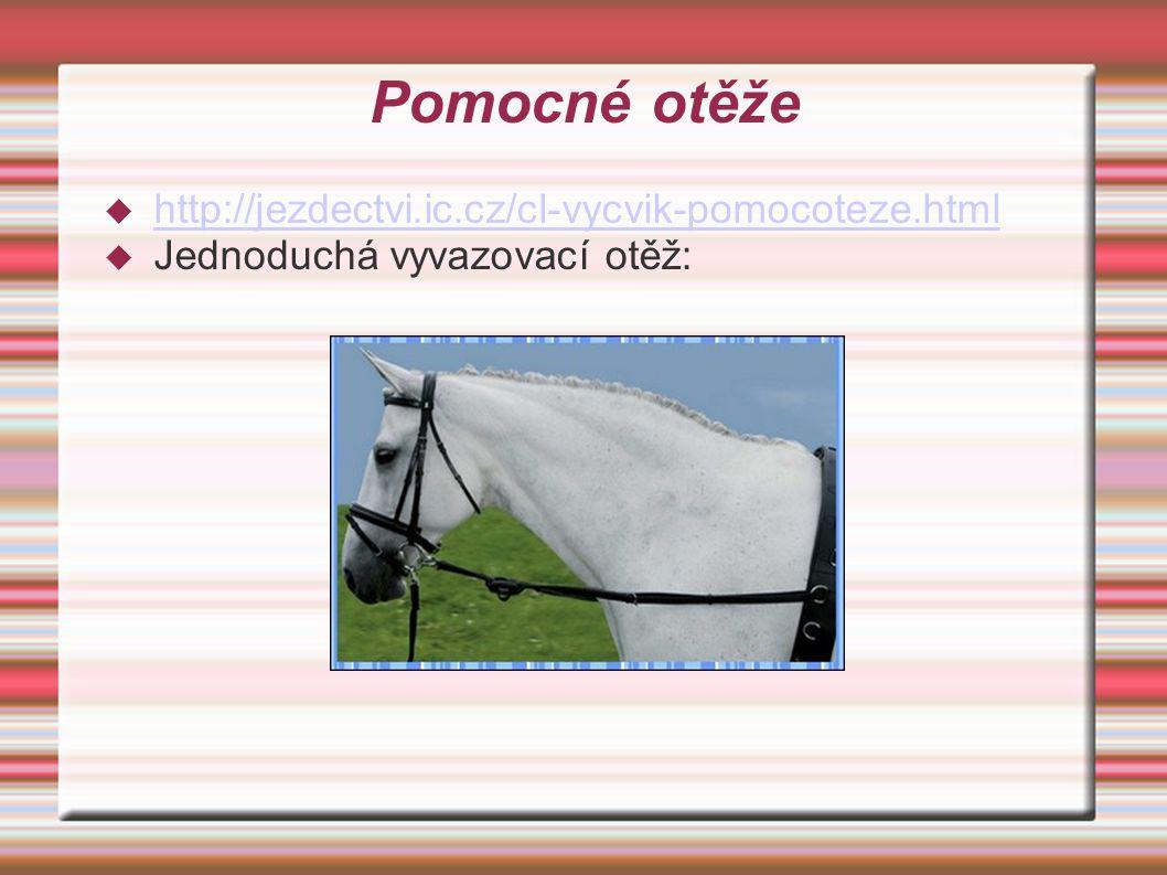 Pomocné otěže http://jezdectvi.ic.cz/cl-vycvik-pomocoteze.html
