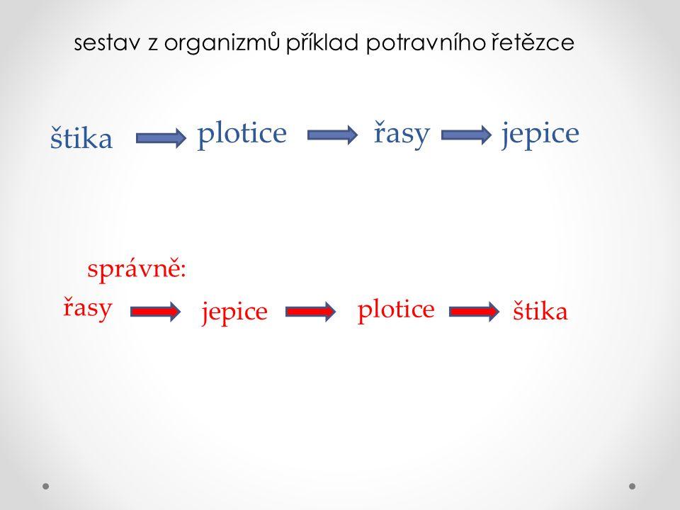 sestav z organizmů příklad potravního řetězce