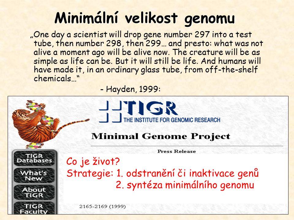 Minimální velikost genomu