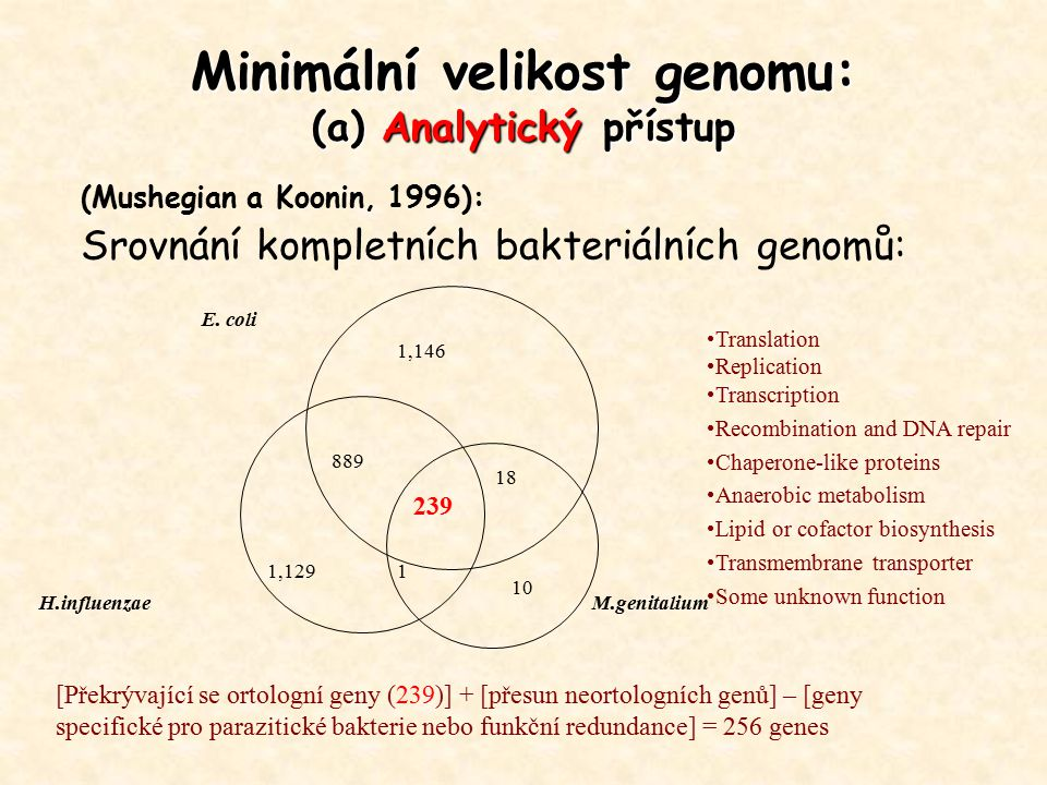 Minimální velikost genomu: (a) Analytický přístup