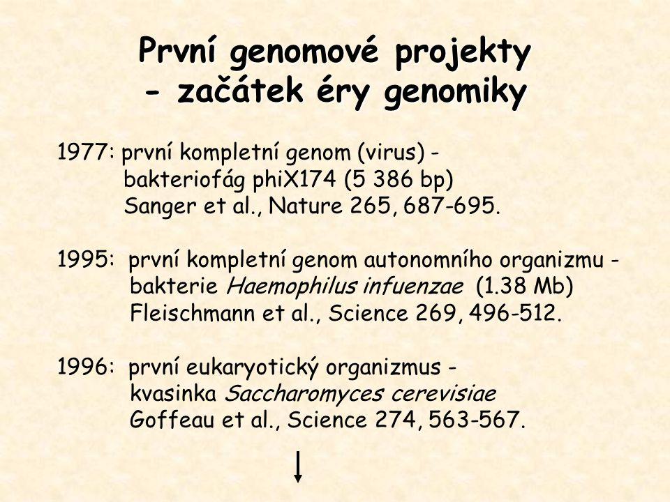 První genomové projekty - začátek éry genomiky