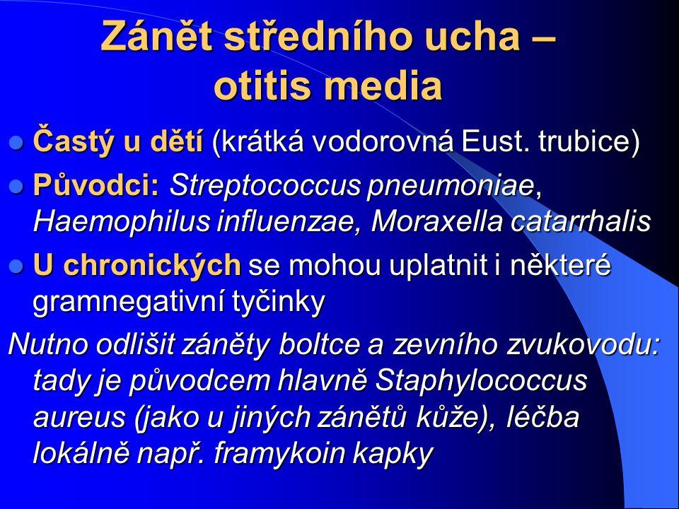 Zánět středního ucha – otitis media
