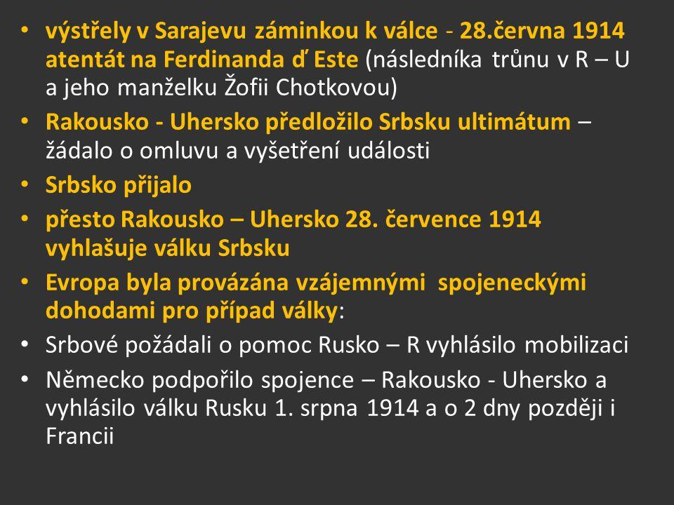 výstřely v Sarajevu záminkou k válce - 28