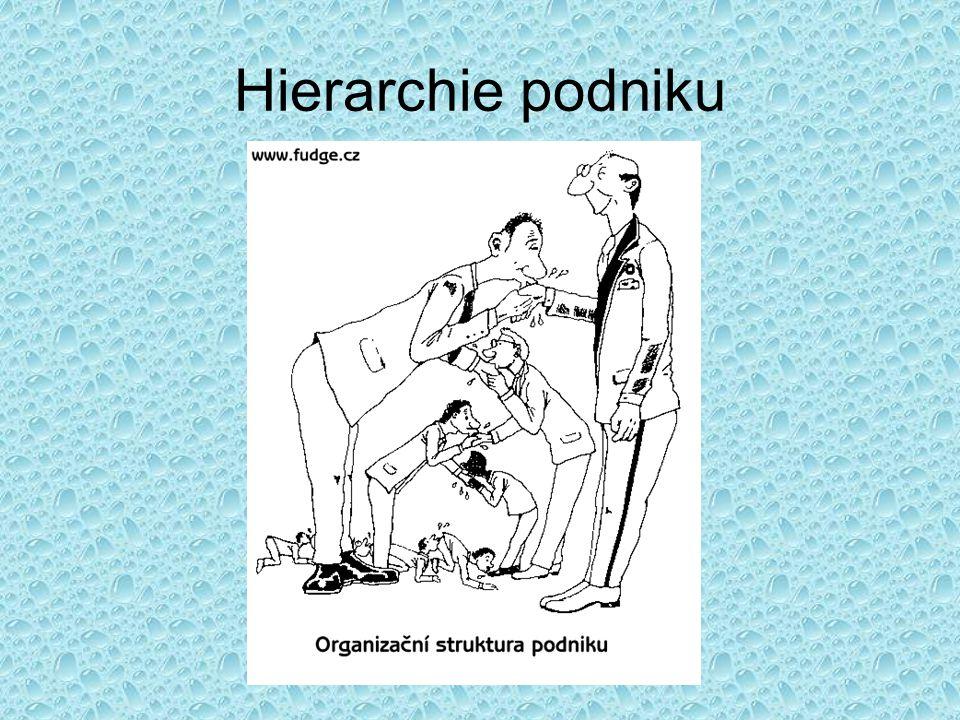 Hierarchie podniku