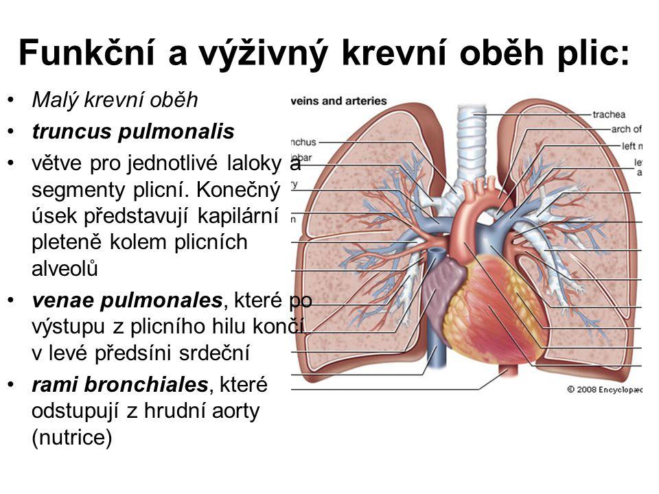 Funkční a výživný krevní oběh plic: