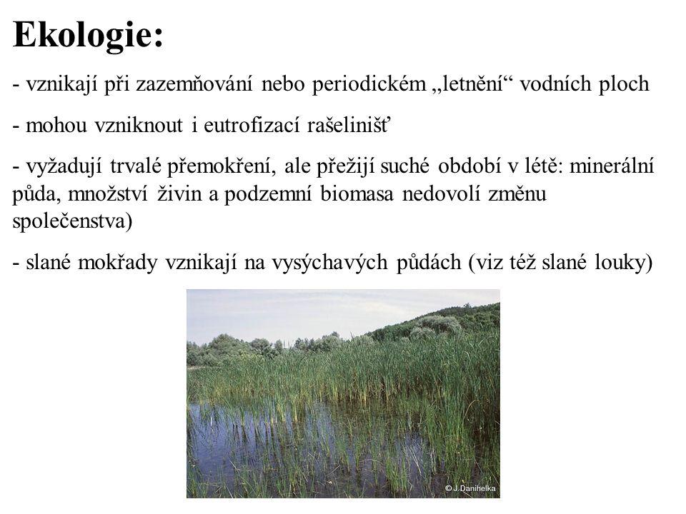 """Ekologie: - vznikají při zazemňování nebo periodickém """"letnění vodních ploch. - mohou vzniknout i eutrofizací rašelinišť."""
